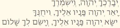 Cohanim-Blessing-Birkat-Cohanim_03